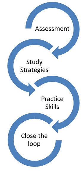 Success Coaching flow chart that reads assessment, study strategies, practice skills and close the loop.
