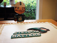 Stetson Hatters football cake