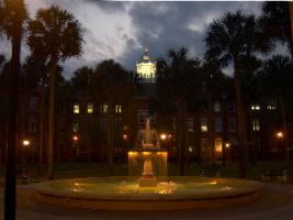 Fountain Elizabeth at Night
