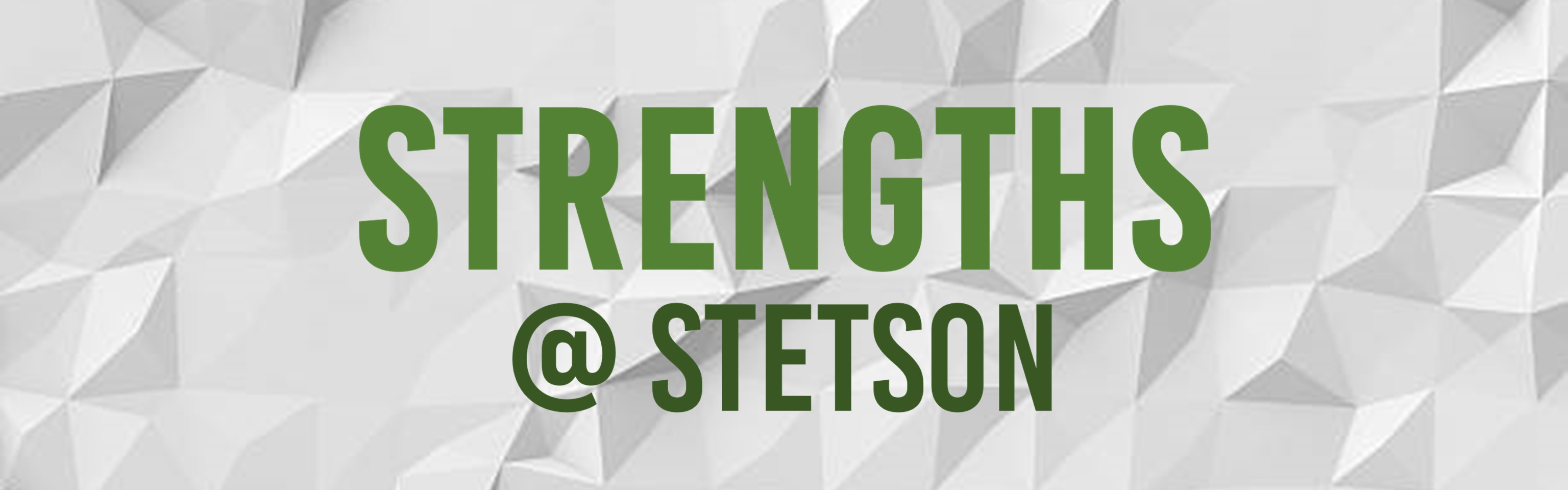 Strengths at Stetson Wordmark on texture white background
