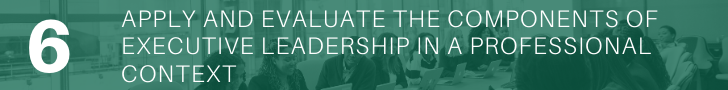 Apply and evaluate the components of executive leadership in a professional context