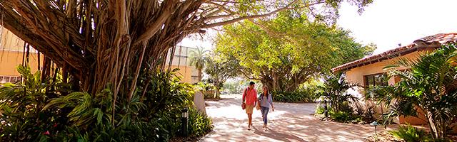 Stetson students walk in Banyan Courtyard on Gulfport campus