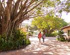 Two students walk past banyan tree at Gulfport campus