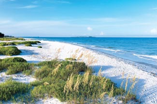 Tampa Bay beach during sunny day