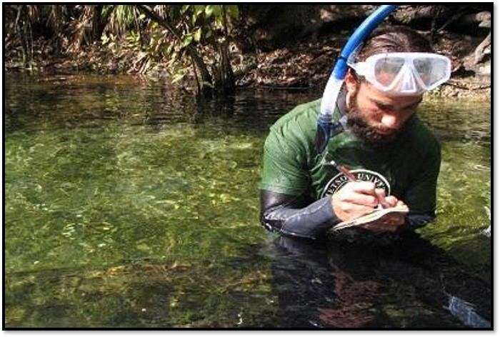 A student records data for a project while snorkeling at Blue Spring State Park.
