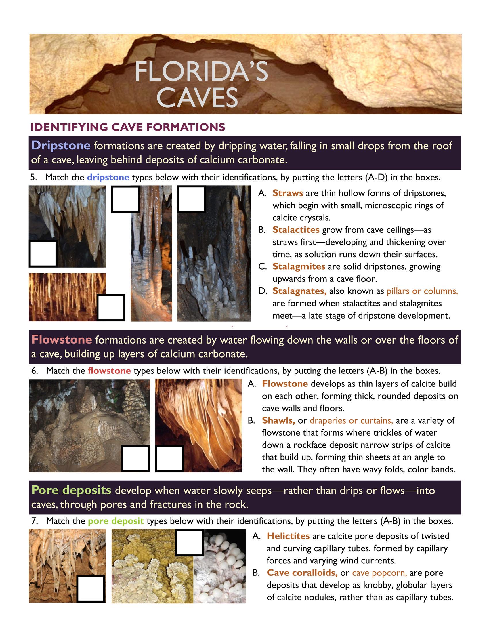 Caves in-depth worksheet