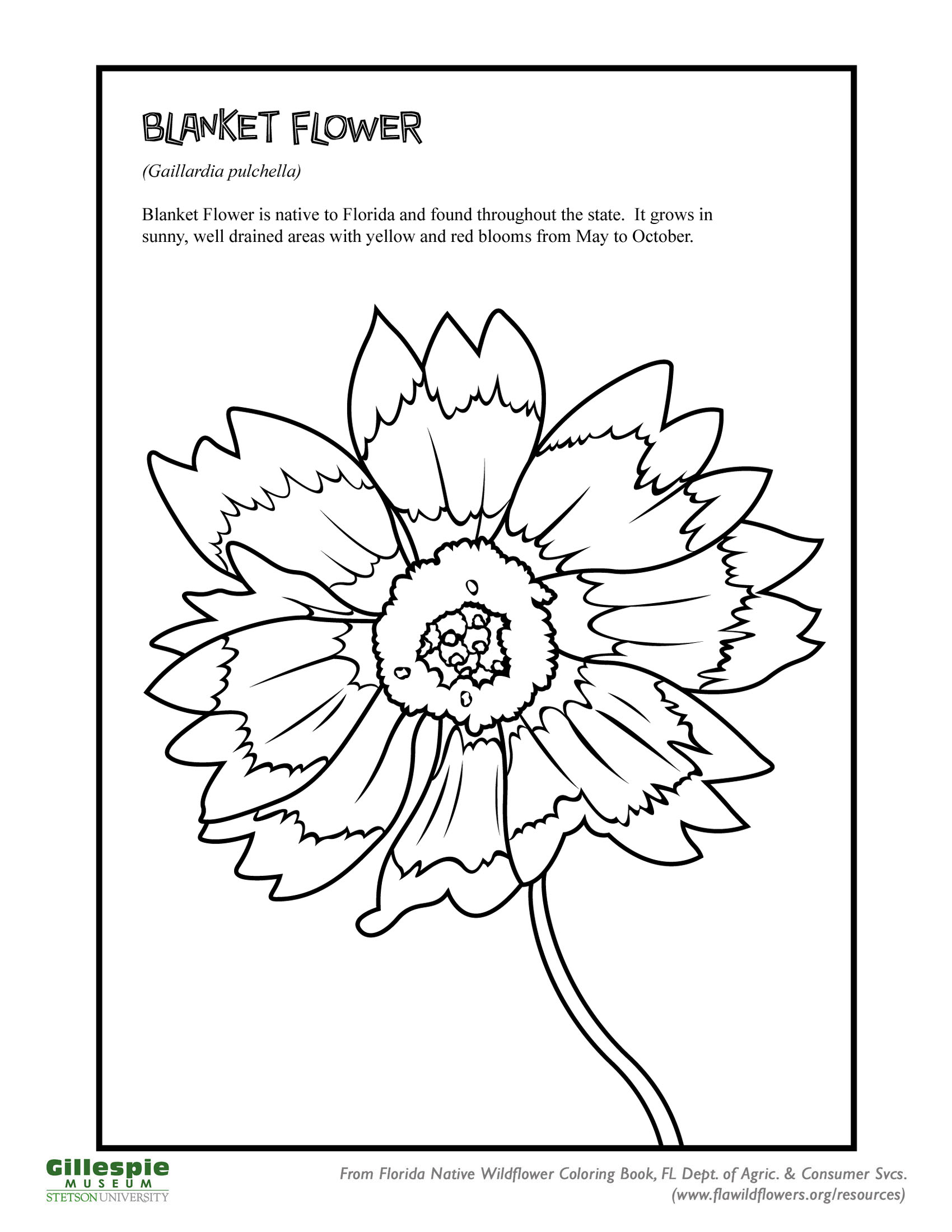 Free printable Earth Day and Ecology coloring pages for use in ... | 2200x1700