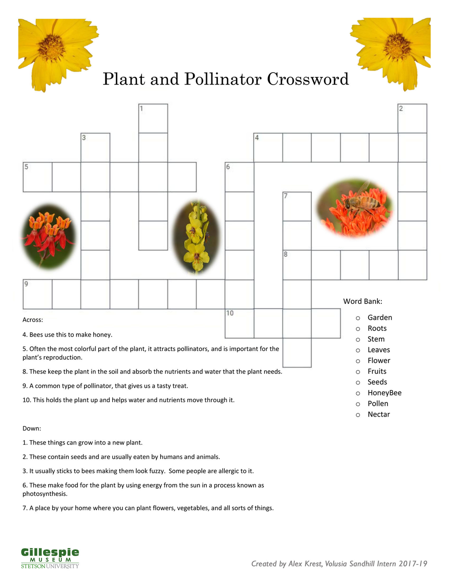 pollination crossword