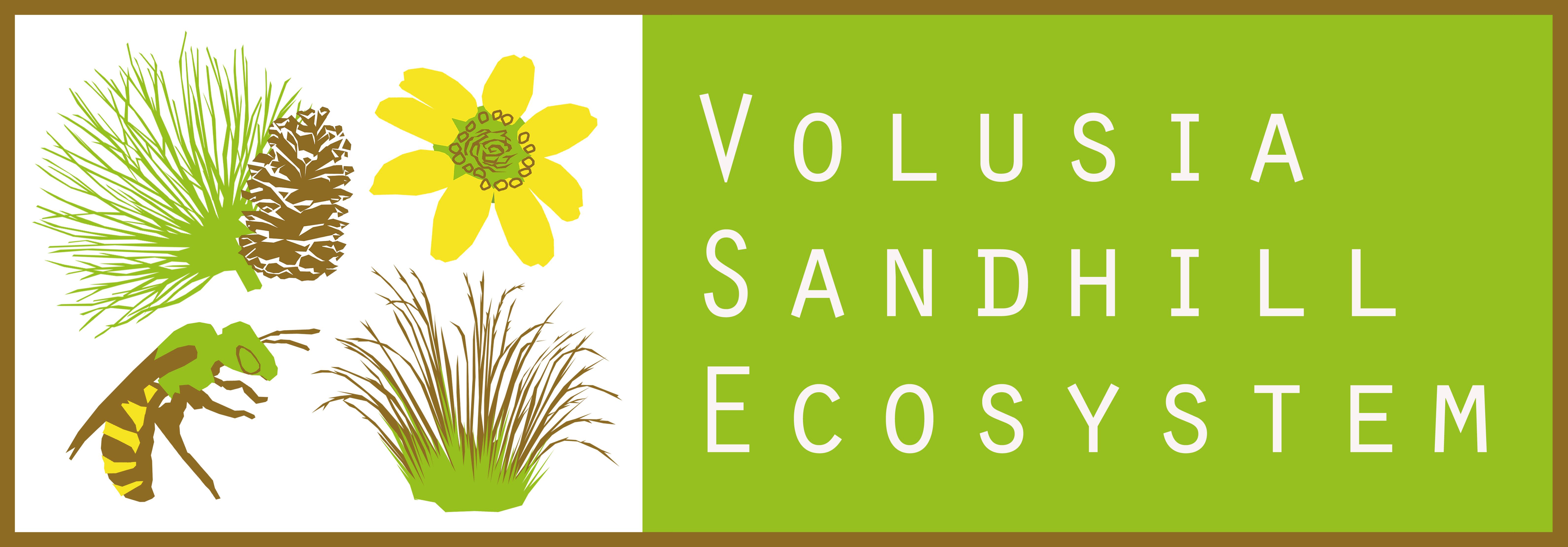 Volusia Sandhill Ecosystem logo