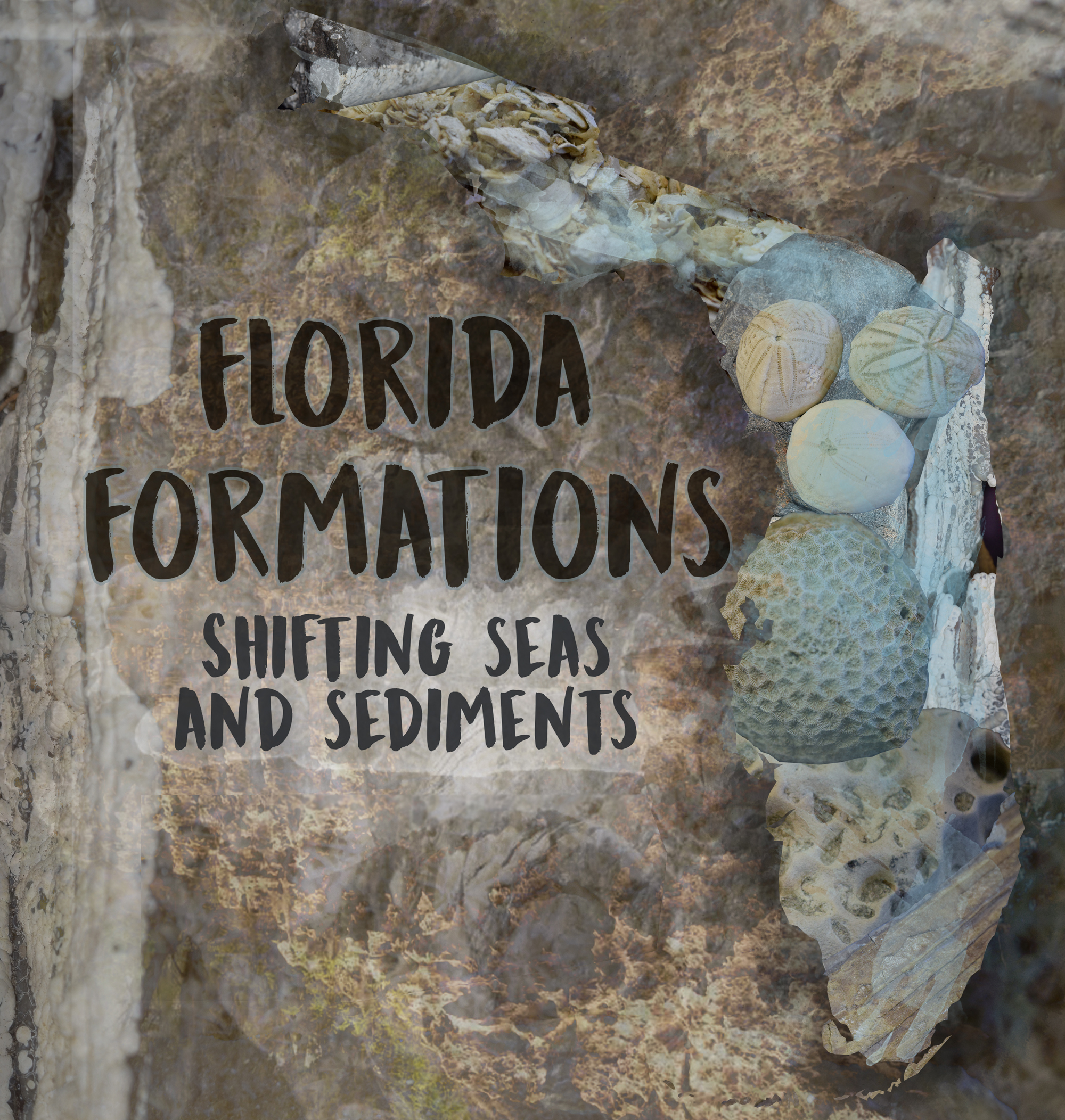 Florida Formations exhibit poster