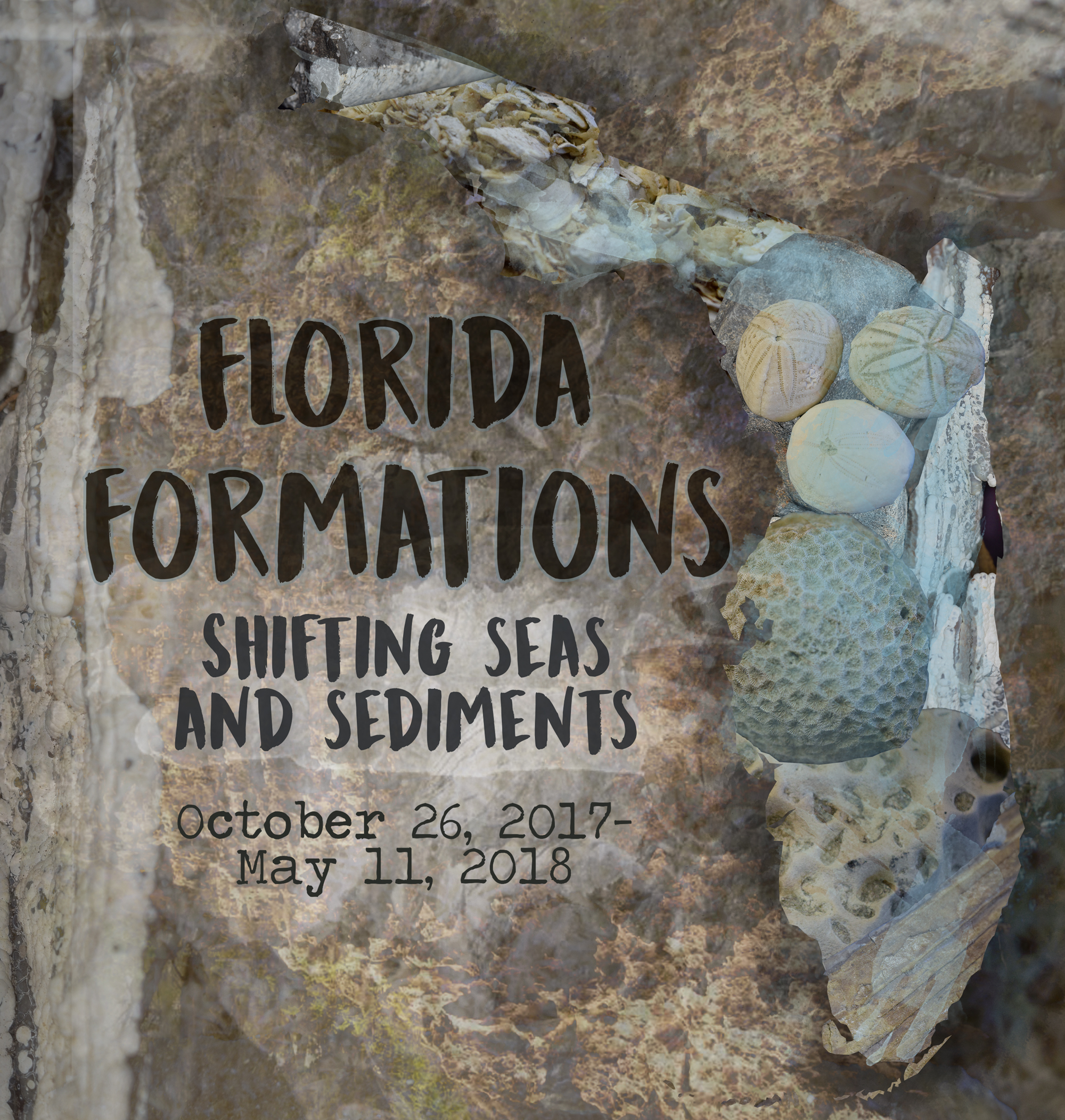Florida Formations, a new exhibit focusing on Florida geology, opening October 26