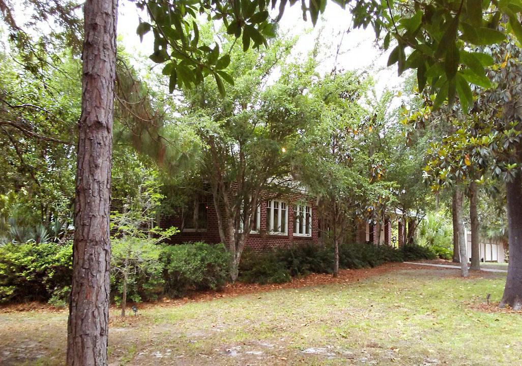 Natural Florida landscape at Gillespie Museum, credit Stetson University