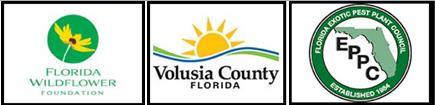 Florida Wildflower Foundation, Volusia County Florida, EPPC